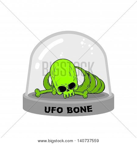 Ufo Bones In Glass Bell. Skull Alien Humanoid Laboratory Flask. Skeleton Alien. Glass Bank Research.