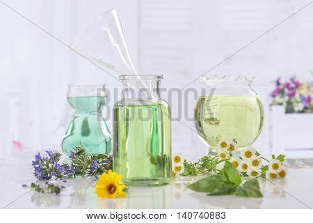 Herbs collection of Fresh green plant and flowers and botle of essential oil
