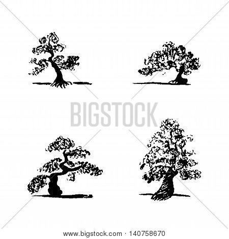 Set of hand drawing sketch four bonsai trees on white background. Vector black bonsai trees.