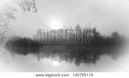 foggy lake tree reflexion after wintertime at a lake in Austria