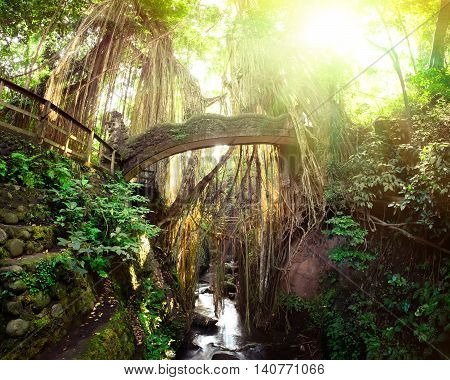 Surreal sunrise colors of fantasy Monkey Forest with Barong Lion bridge and Hindu Temple. Bali Indonesia. Concept landscape for mysterious background