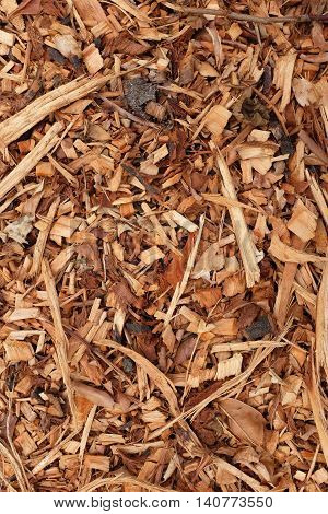 Bark, Leaves And Wood Chippings Background
