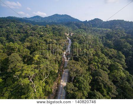Aerial jungle way view of Koh Phangan, Thailand