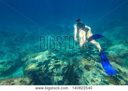 Young woman free diving in the blue waters of the popular Similan Islands in Thailand, Andaman Sea. On background a lot of fish.