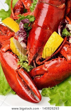 Lobster on white plate close up served with lemon slices and lettuce leaves