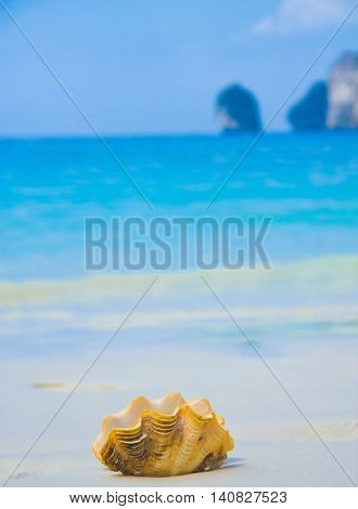 Idyllic Image Tropical Symbol