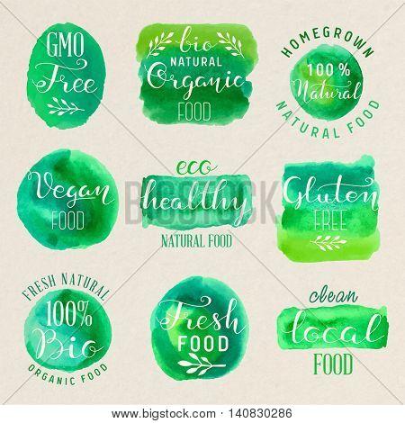 Healthy food lettering illustration