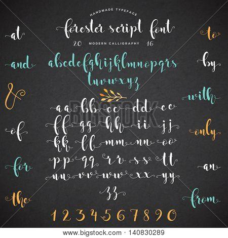 Vector handwritten font