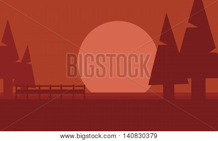 Silhouette of spruce in hill at afternoon vector illustration