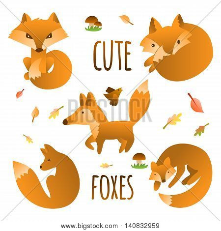 Vector set of cute foxes autumn leaves and mushrooms. Hand draw fox for children's books