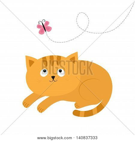 Cute red lying orange cat and looking at flying pink butterfly. Dash line track. Mustache whisker. Funny cartoon character. Flat design. Vector illustration