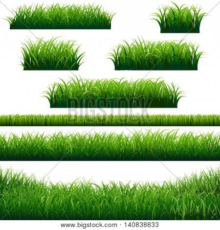 Green Grass Borders Collection, Vector Illustration