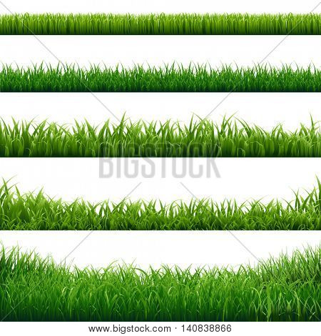Grass Frame, Vector Illustration