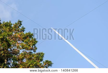 contrail of an airplane in the blue cloudless sky