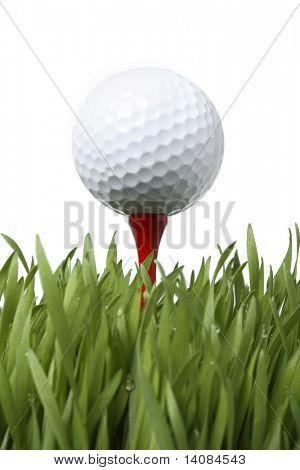 Golf Ball on Tee in Grass