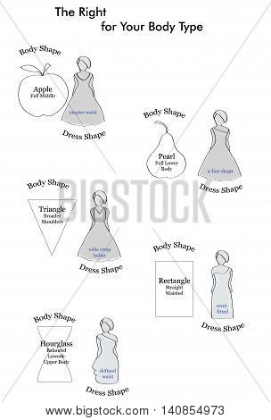 types of wedding dresses suitable figure. types of female figures. vector illustration