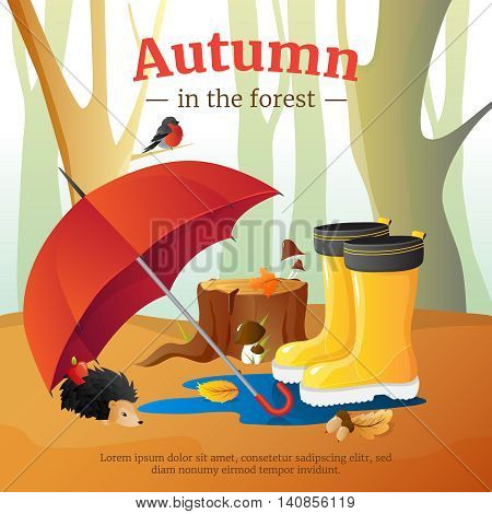 Autumn in forest poster with red umbrella wellingtons and hedgehog with trees trunks background cartoon vector illustration