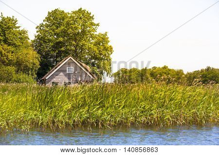 Lonely wooden house near a lake hidden under trees and behind the tall grass (copy space)