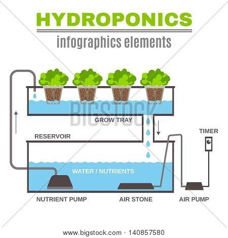 Color flat cncept depicting scheme and the principle of hydroponics vector illustration