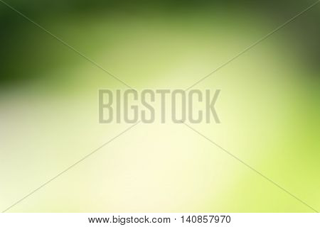 A beautiful nature Green blurred abstract background