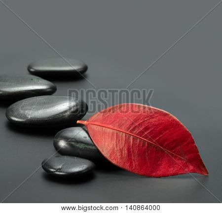 black stones with autumn red leaf