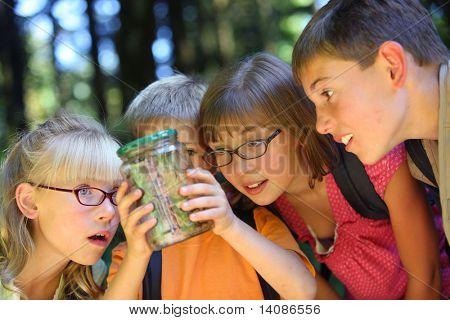 Niños mirando bug en tarro