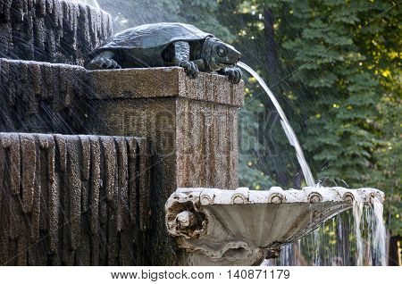 Detail of the Freshwater Turtle Fountain in Retiro Park Madrid Spain. The fountain was built by architect Francisco Javier de Marietegui and sculptures made of granite and limestone were carved by the sculptor Jose Tomas. It was inaugurated in 1832.