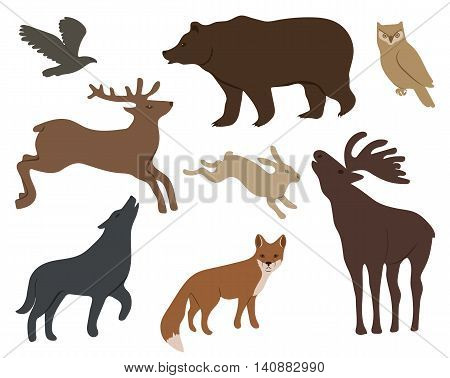 Collection of wild forest animals isolated on white