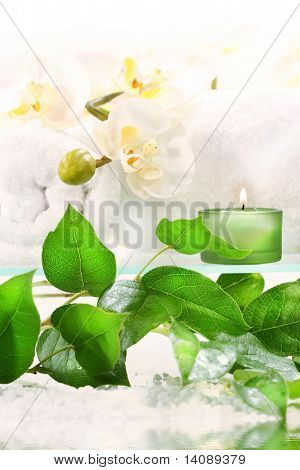 White orchid on shelf with green candles