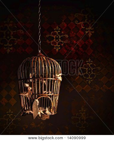 Old wooden bird cage with nothing but feathers left inside