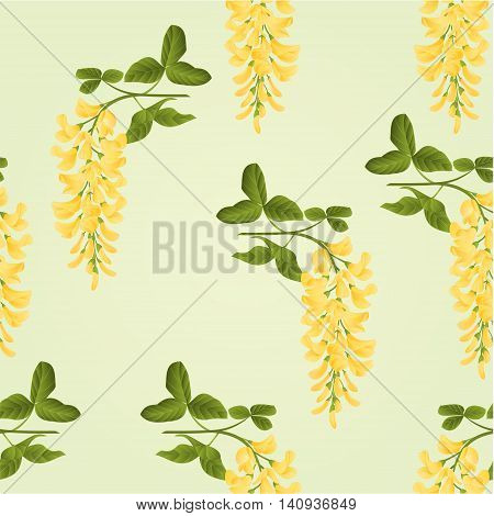 Seamless texture Laburnum branch decorative shrub nature background vector illustration