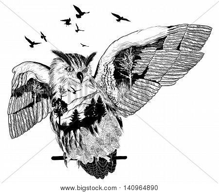 Vector Hand drawn owl for your design wildlife concept