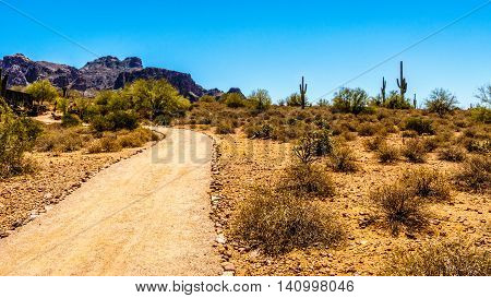Desert Trail to Superstition Mountain in Tonto National Forest in Arizona, USA