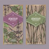 Set of two color labels with lemongrass and patchouli on vintage background. Aromatherapy series. Great for traditional medicine, perfume design, cooking or gardening labels. poster