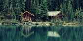 Lake O'hara in Yoho National Park with waterfront carbin. poster