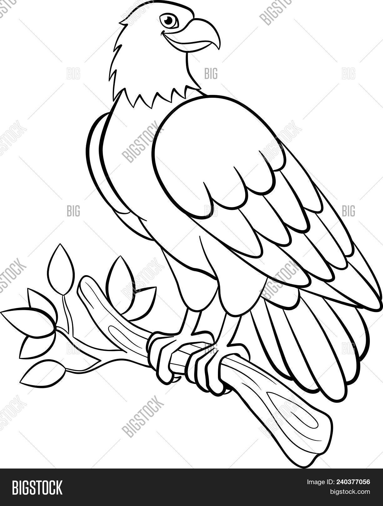 Feather of a bird. Kindergarten coloring sheet || COLORING-PAGES ... | 1620x1225