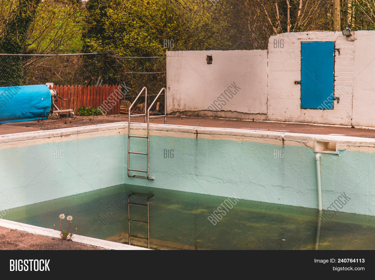 Abandoned Dirty Pool Image Photo Free Trial Bigstock