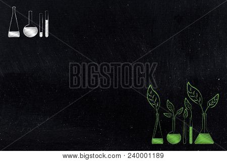 Organic Ingredients Conceptual Illustration: Leaves Growing Out Of Lab Phial Bottles And Bottles Wth
