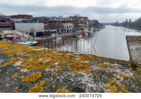 The Historic Kingston Bridge Over The River Thames Covered With Gold Lichens, England, United Kingdo