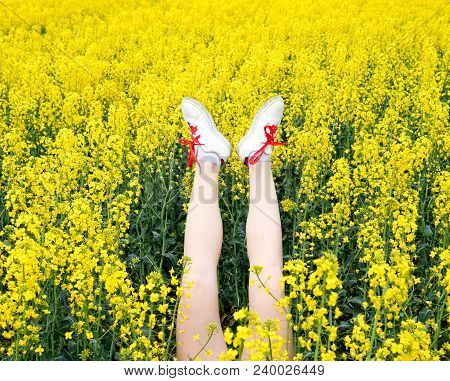 Female Legs In Sneakers Sticking Out Of Flowers. Legs Up. Legs Against The Background Of Yellow Rape