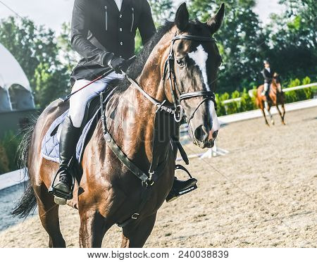 Showjumping Competition, Bay Horse And Rider In Black Uniform Performing Jump Over The Bridle. Eques