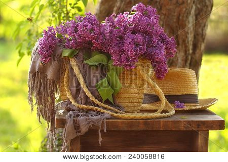 Lilacs In A Wicker Basket On A Bench In The Garden