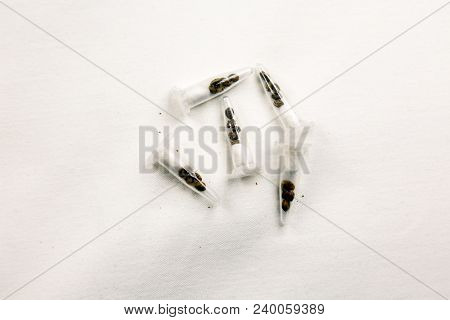 Cannabis Seeds. Marijuana Seeds. Isolated on white. Room for text.