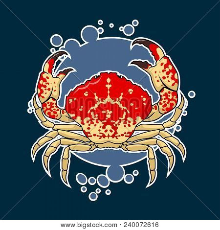 Colorful Vector Illustration Of Sea Crab On Background With Bubbles. Sea Life Sticker With Crab.