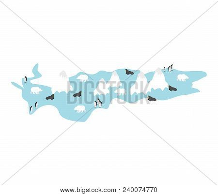 Antarctic Animal And Plants. North Pole Flora And Fauna On Mainland. Vector