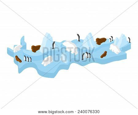 Antarctic Isometric Map Animal And Plants. North Pole Flora And Fauna On Mainland. Vector