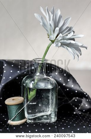 Still Life With Pink Daisy Flower In The Small Vintage Glass Botlle, Needle And Spool Of Thread. Cho