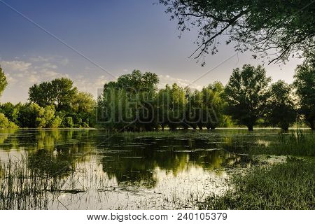 Peaceful Lake Landscape On The Afternoon Sun. Sunny Day On Lake Shore. Peaceful Lake Water And Green