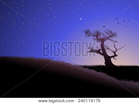 Illustration Of A Dried Tree On Grassland At Dusk