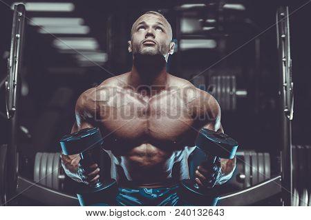 Brutal Strong Bodybuilder Athletic Men Pumping Up Muscles With Dumbbells.
